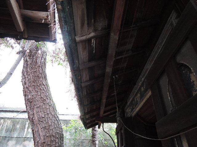 画廊えんじゅ 改修前の写真
